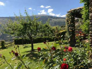 Cortijo en Capileira jardin 2