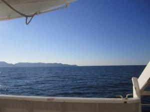 photo-ferry-nador